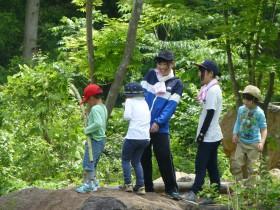 今年の「森であそんでみよう-キッツ森のようちえんへの参加-」が終了しました